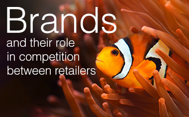 Brands and their Role in Competition Between Retailers